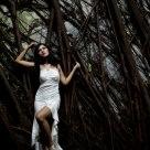 Wood Fairy 2
