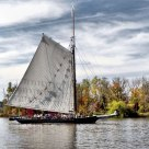 The Sloop