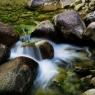 water rhythm (huangshan)