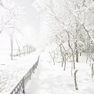 Snow on March 18 in Beijing
