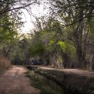 Rio Grande bosque peaceful valley path