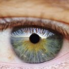 eye & landscape
