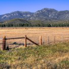 Fence, Pasture and Mountains