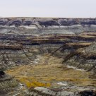 Horseshoe Canyon (Overcast)