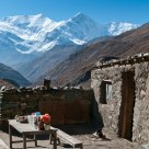 Annapurna Circuit Tea Shop
