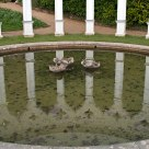 Reflection in an ornamental pond
