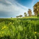 sardinian inland