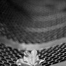 Flower's bench