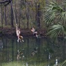 The Rope Swings