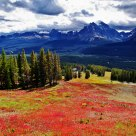Canadian Rockies  in Autumn