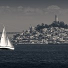 Sailboat & Coit Tower