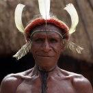Dani's tribe
