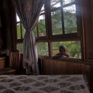 boy on the window