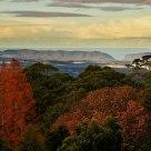Sydney Mt Tomah