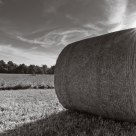 Sun and Round Bale
