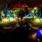 Chihulyscape
