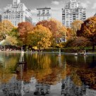 Central Park, N.Y. (USA)