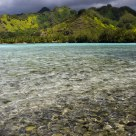 Moorea Magic