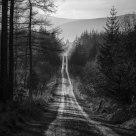 Greystoke Track