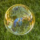Colorfull Bubble