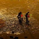 劳作的渔民