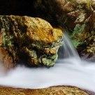 Stone in Stream