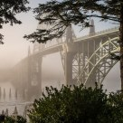 Bridge, Morning, Fog