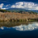 Reflections on the Klamath River