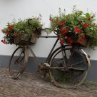 Flowered bicycle