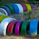 colored wheels