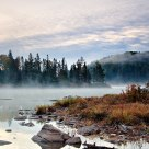 Misty Dawn on Costello Creek