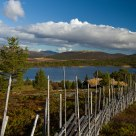 The old fence and landscape / Rondane / Norway