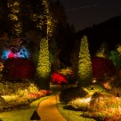 Sunken Garden at Night