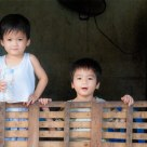 Little Vietnamese