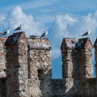 Seagulls resting on Sirmione Castle tower while clouds are forming around the lake