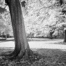 Infra Park