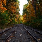 Autumn Leaves & Railway tracks