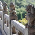 Lion on bridge