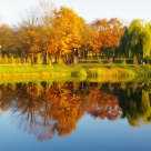 Pond autumn landscape