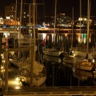 Harbor Nights
