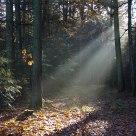 Shine a light on me.....