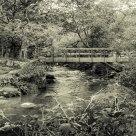 Bridge over river Mellte