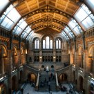 National History Museum Main Hall