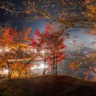Fantastic Autumn Night