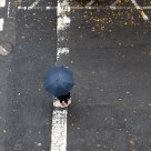 Umbrella in the Street