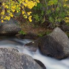 Fall Color And The Cascading Water