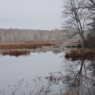 hell-hollow pond
