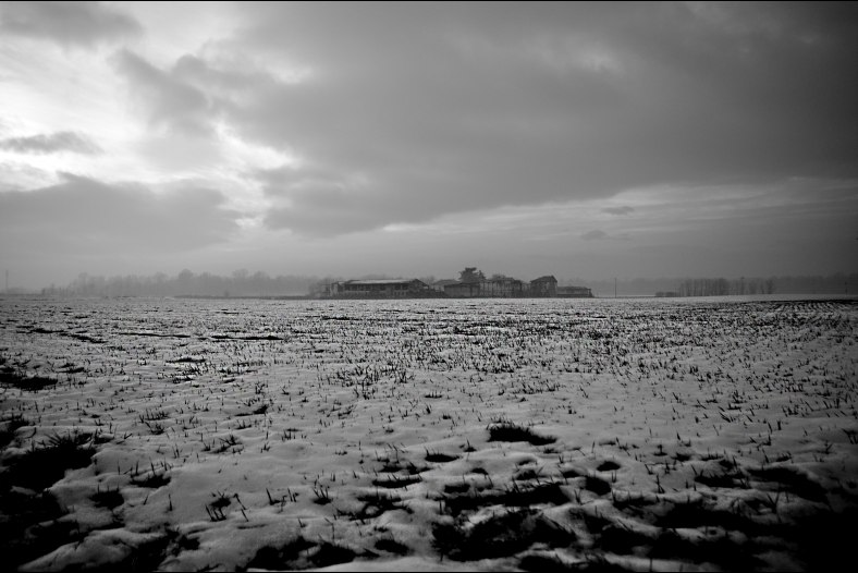 Snow fields in Lombardy