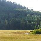 Silver Lake Wetland
