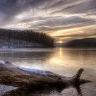 Log at Tucker Lake.